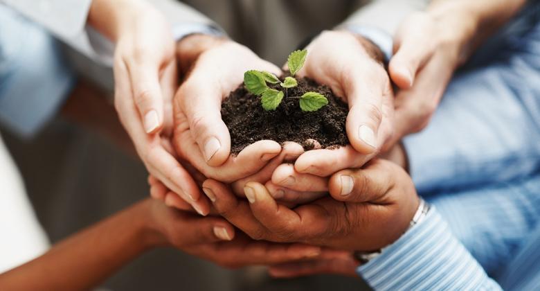 values social economy
